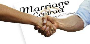 Prenup, Before, Handshake, Contract, Compatible